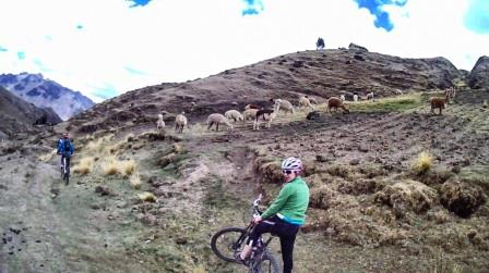 Lares downhill www.perucycling.com